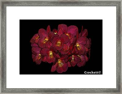 Orchid Floral Arrangement Framed Print