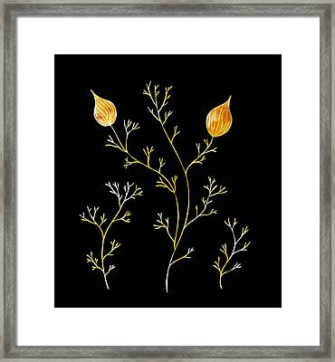 Organic Forms Framed Print by Frank Tschakert