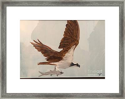 Framed Print featuring the painting Osprey by Donald Paczynski
