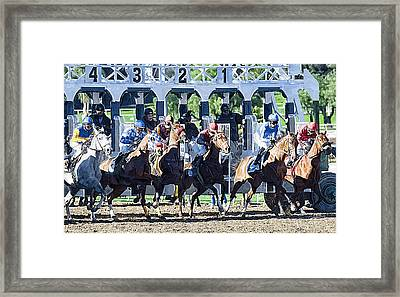 Out Of The Gate Framed Print by Clarence Alford