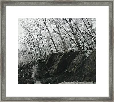 Framed Print featuring the photograph Out Of The Rocks by Ellen Levinson