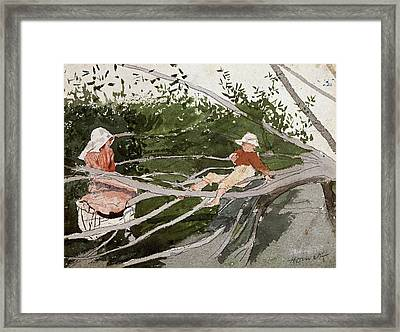 Out On A Limb Framed Print by MotionAge Designs