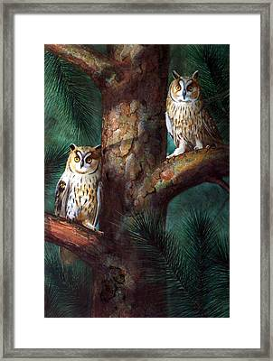 Owls In Moonlight Framed Print by Frank Wilson