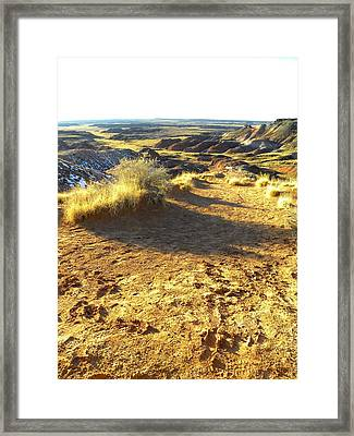 Painted Desert 2 Framed Print by Patricia Bigelow