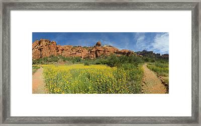 Palatki Indian Ruins Framed Print by Bob Coates