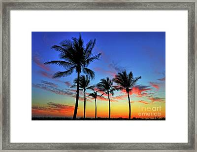 Framed Print featuring the photograph Palm Tree Skies by Scott Mahon