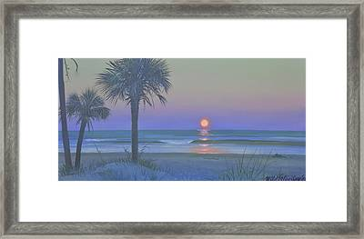 Palmetto Moon Framed Print by Blue Sky