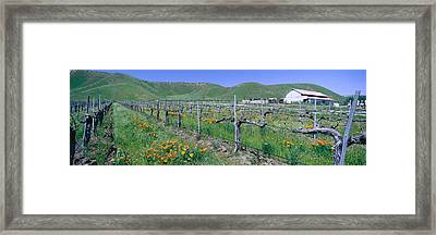 Panoramic View Of Golden California Framed Print