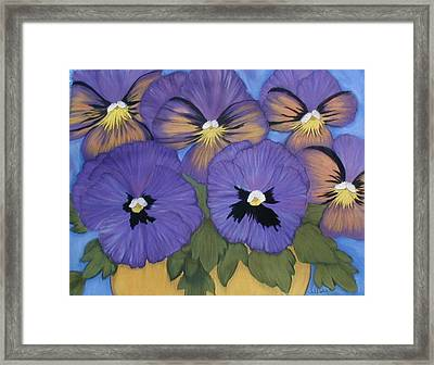 Pansy Power Framed Print by Norma Tolliver