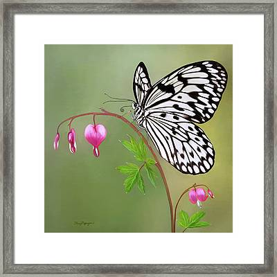 Paper Kite Butterfly Framed Print by Thanh Thuy Nguyen