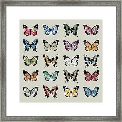 Papillon Framed Print by Sarah Hough