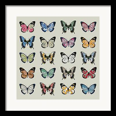 Butterfly Digital Art Framed Prints
