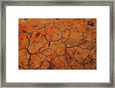 Parched Framed Print