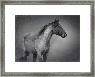 Parker Framed Print