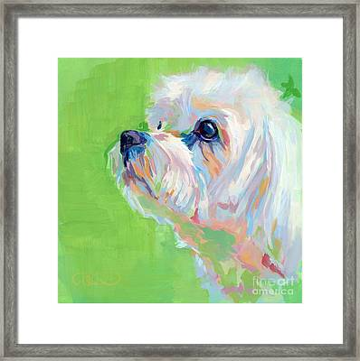 Parker Framed Print by Kimberly Santini