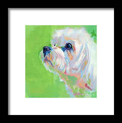 Pastel Pet Portrait Framed Prints