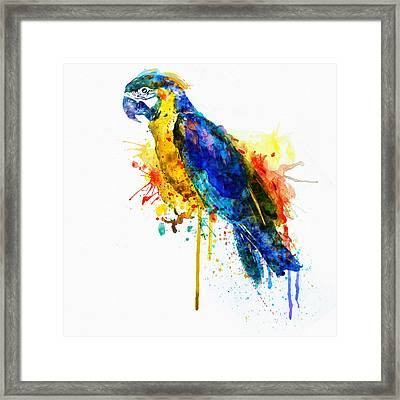Parrot Watercolor  Framed Print by Marian Voicu