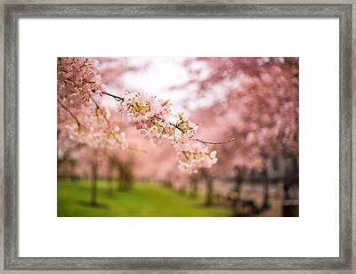 Past Present And Future Framed Print