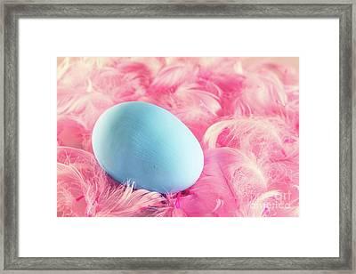 Pastel Easter Egg Lying On Feathers Framed Print by Michal Bednarek