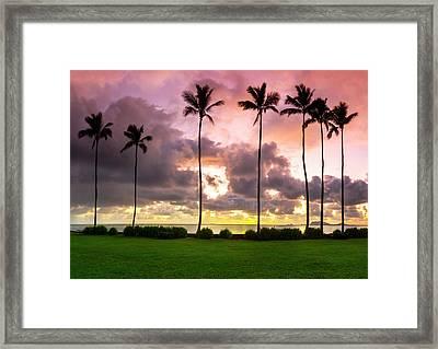 Pastel Palms Framed Print by Sean Davey