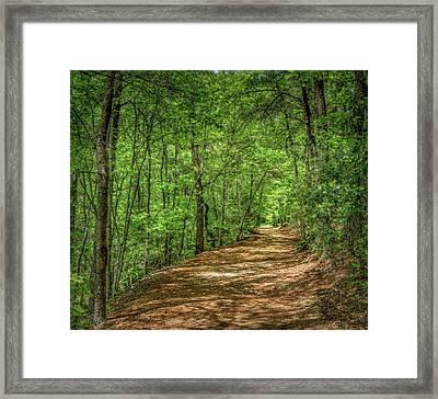 Path Less Travelled - Impressionist Framed Print