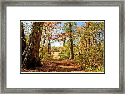 Path Out Of The Woods To A Meadow In Autumn Framed Print