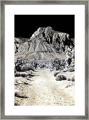 Path To The Red Rocks Framed Print by John Rizzuto