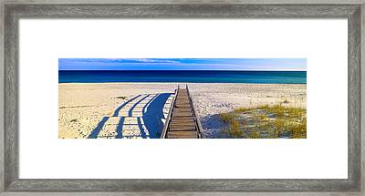 Pathway And Sea Oats On Beach At Santa Framed Print by Panoramic Images