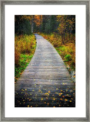 Pathway Home Framed Print by Ed Boudreau