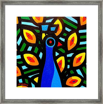 Peacock Framed Print by John  Nolan