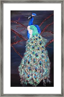 Peacock  Framed Print by Mikki Alhart