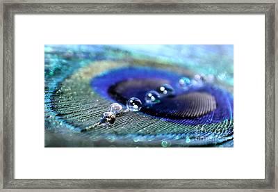 Peacock Sparkle Framed Print by Krissy Katsimbras