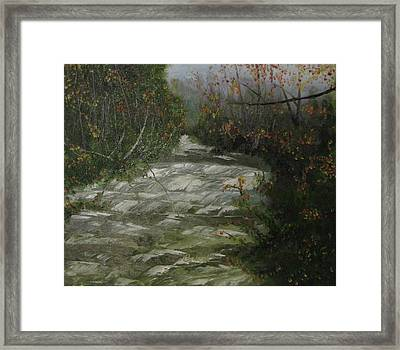 Peavine Creek Framed Print
