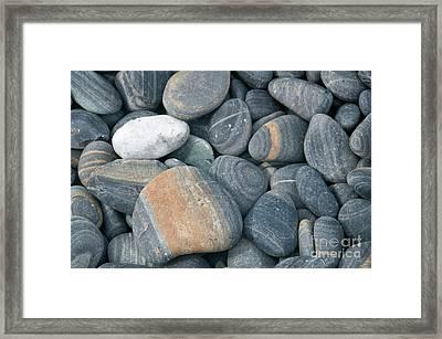 Pebbles Framed Print by American School