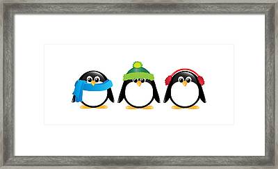 Penguins Isolated Framed Print by Jane Rix