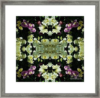 Petals Framed Print by Amanda Kessel