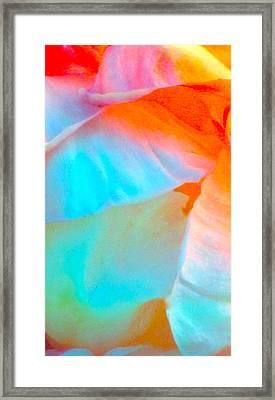 Petals Framed Print by Gwyn Newcombe