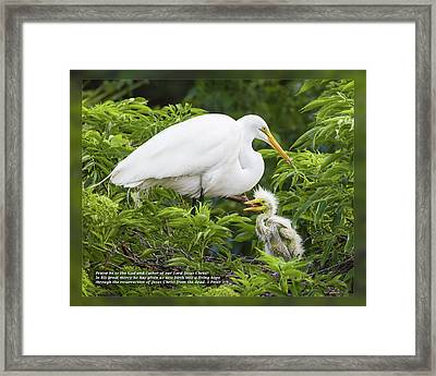 Framed Print featuring the photograph 1 Peter 1 3 by Dawn Currie