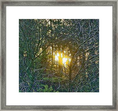 Photo Winter Solstice Dawn Framed Print by Ray  Petersen