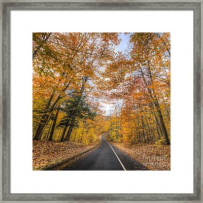 Pierce Stocking Drive In Fall Framed Print