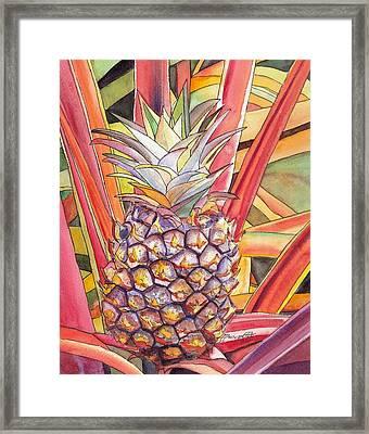 Pineapple Framed Print by Marionette Taboniar
