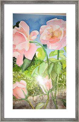 Pink Dream Framed Print by Mabel Moyano