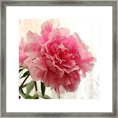 Pink Peony 2 Framed Print by Katy Mei