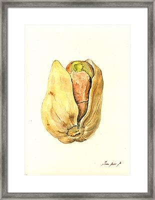 Pistachio Framed Print by Juan  Bosco