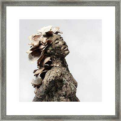 Placid Efflorescence Framed Print by Adam Long