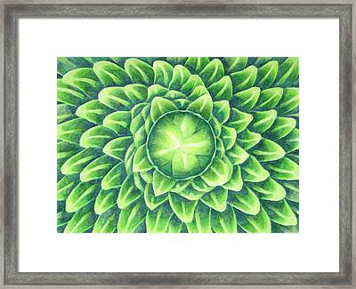 Plant Design Framed Print by Thacia Langham