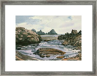 Point Lobos Framed Print by Donald Maier