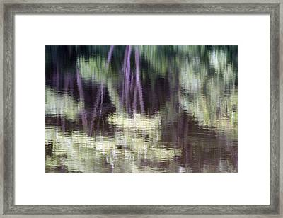 Pond Reflect Framed Print