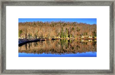 Framed Print featuring the photograph Pond Reflections by David Patterson