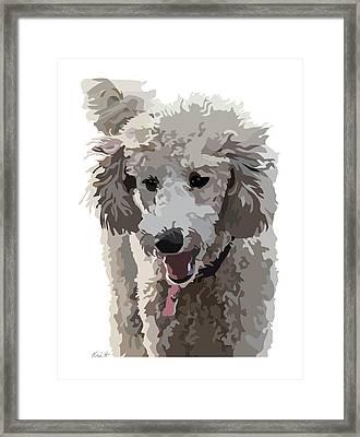 Poodle Portrait II Framed Print